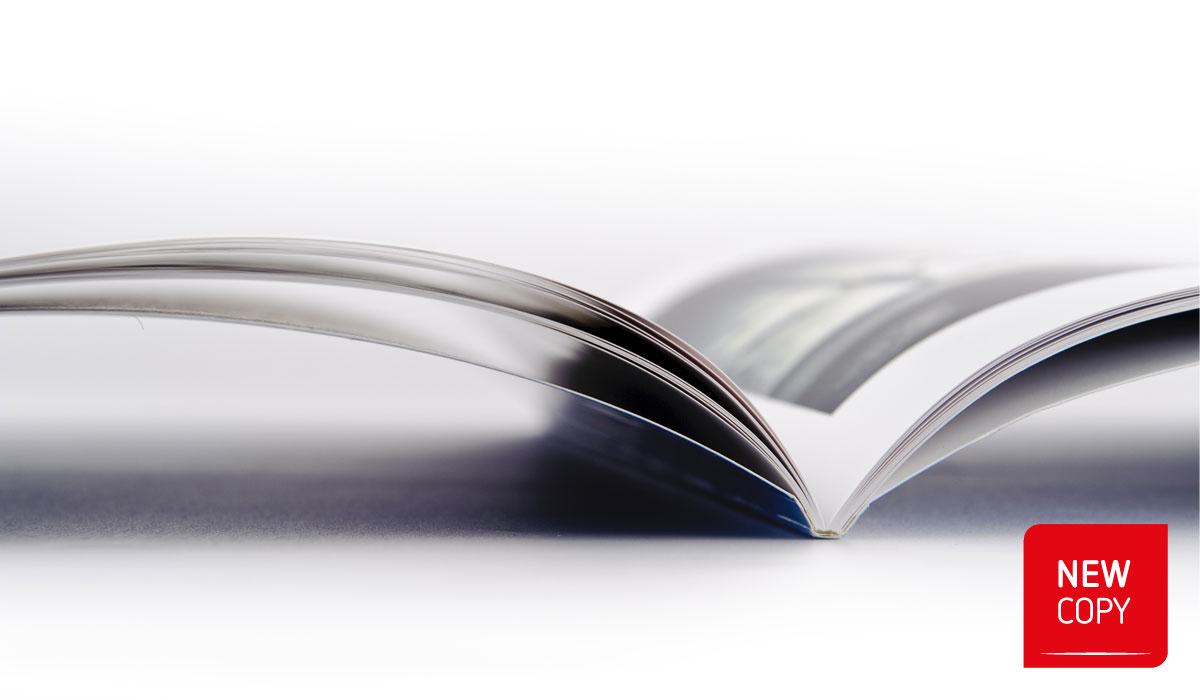 Brochure / Cataloghi / Depliant / Dossier / Guide / Listini prezzi / Manuali / Presentazioni / Rapporti / Relazioni / Riviste / Tesi